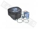 Cylinder POLINI cast iron Ø69 pin Ø18 Piaggio APE P601V/ Car P2- P501 2T